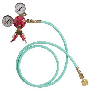 Dual Wall Mount Regulator - 6 Ft. Pressure Hose