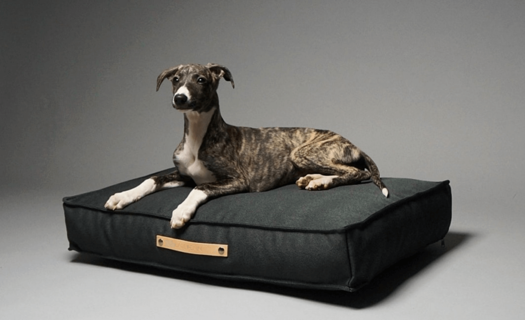 10 Luxury & Orthopedic Dog Beds 2021 UK