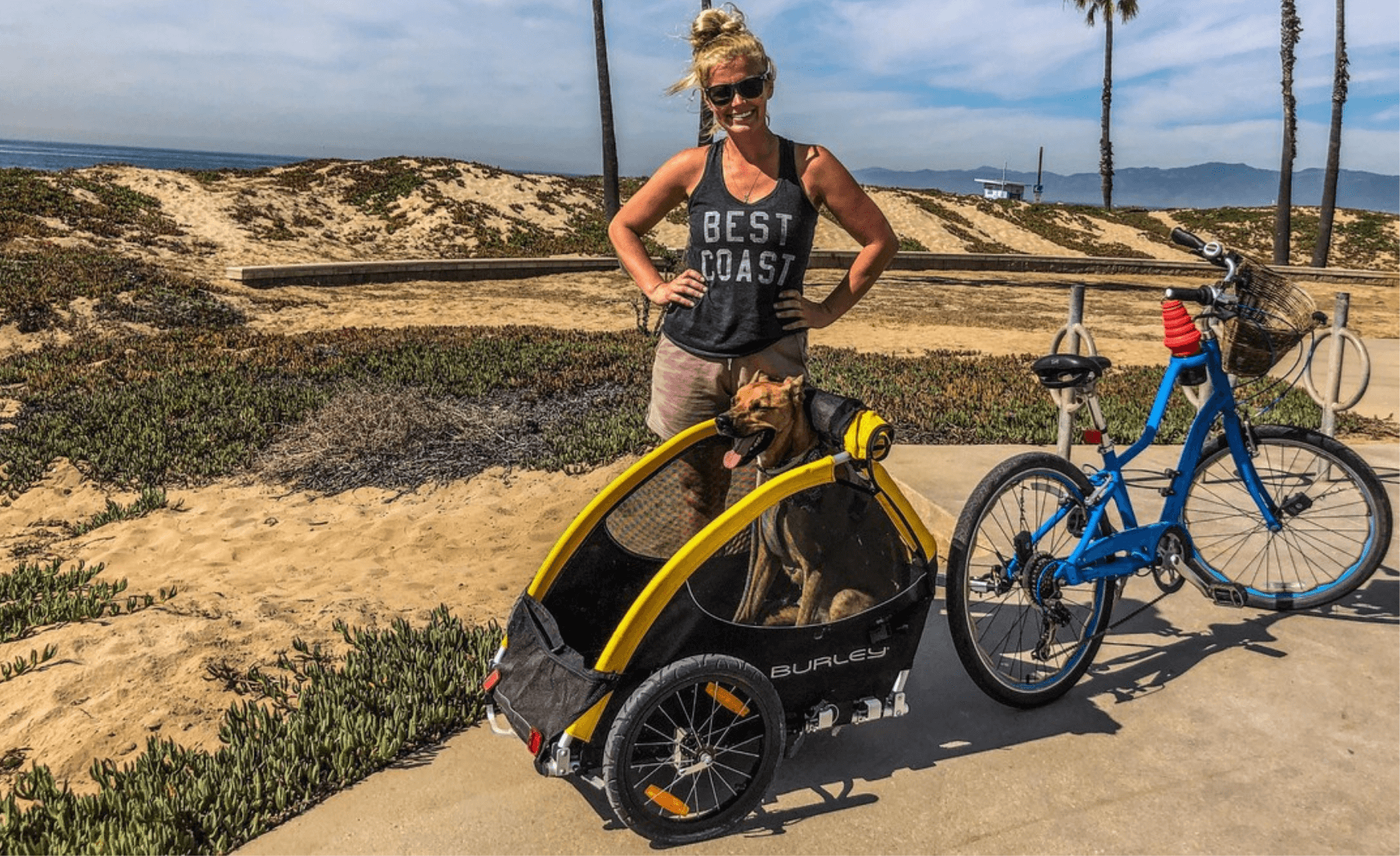 5 Best Dog Bike Trailers 2020 compared, cycle with your best buddy anywhere! - PetsOwnUs