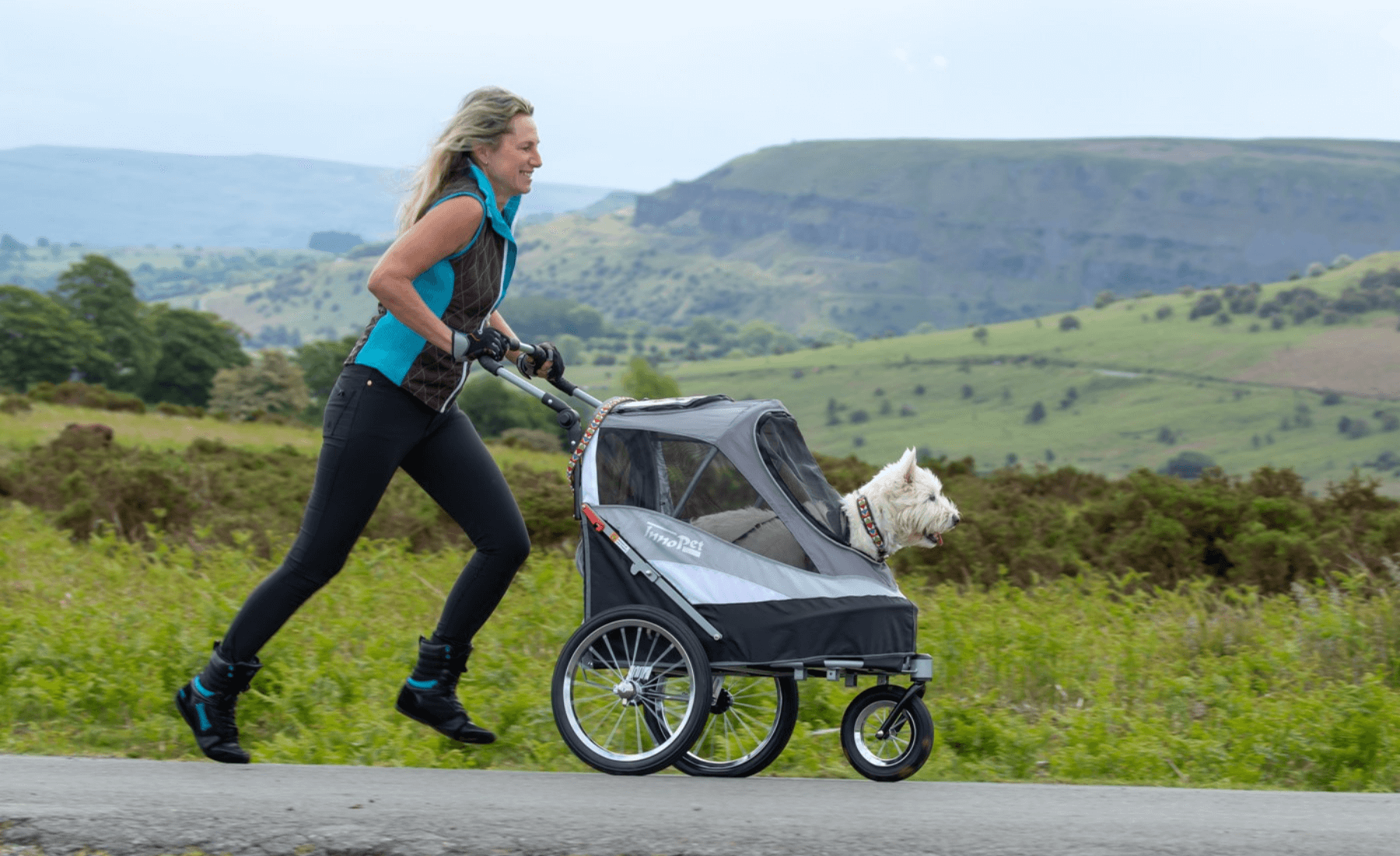 All Terrain Dog Buggy Comparison- Best Dog Pram 2020 in the UK - PetsOwnUs