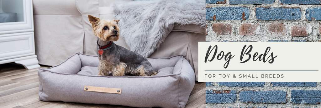Small dog breed beds