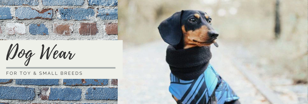 Dog Wear for Small Breeds