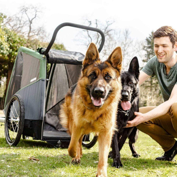 Dog Bike Trailer for large breeds