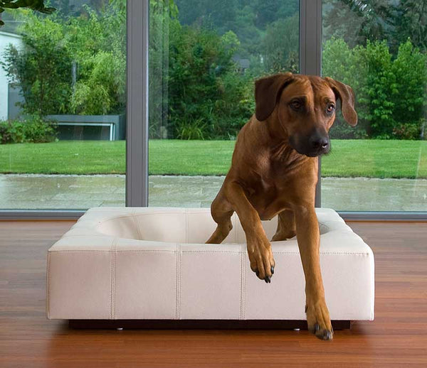 Faux leather luxury cube dog bed