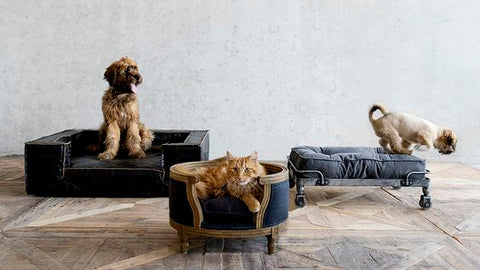 Lourd Lou Luxury Dog Beds