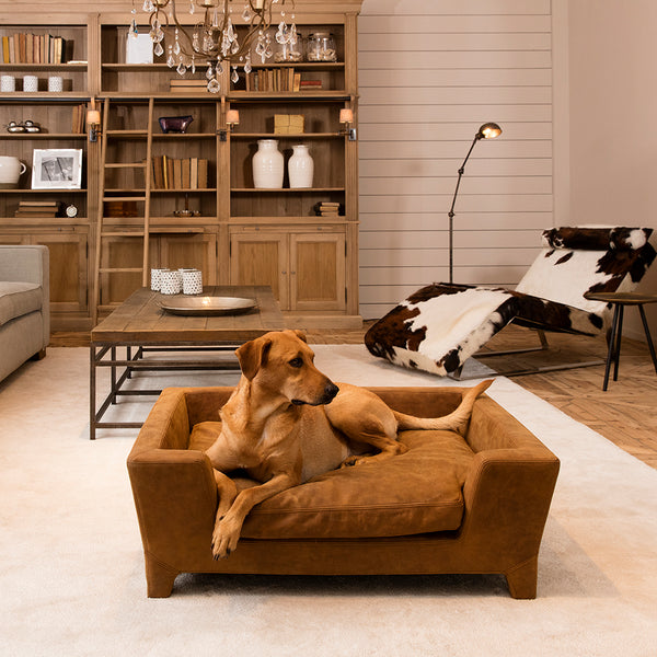 massimo luxury dog bed by lord lou