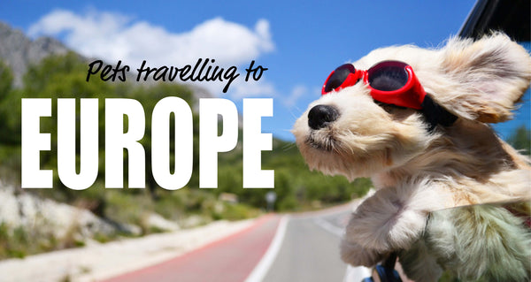 Pets Travelling in the EU