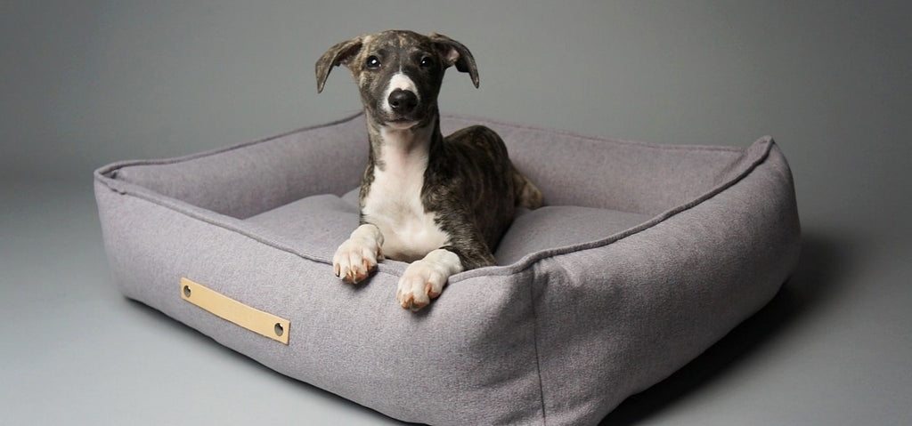 Movik Luxury Dog Bed
