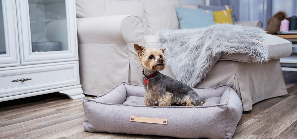 Tove Luxury Dog Bed with High Sides