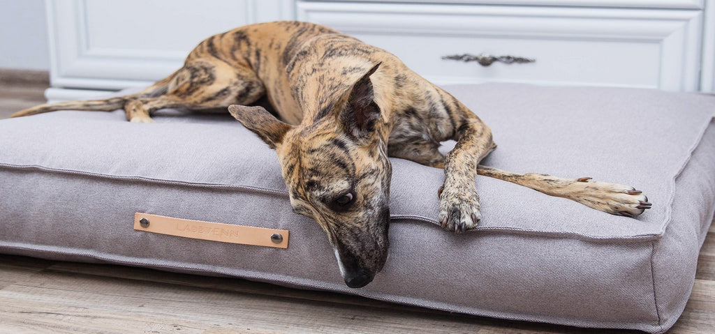 Tove Luxury Dog Bed
