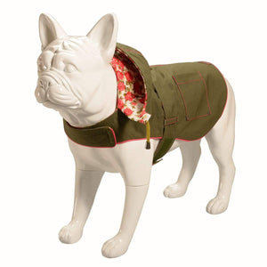 Baker & Bray Dog Apparel Baker & Bray | Hampstead Dog Hoodie | Olive/Summer Rose PetsOwnUs - Pets Own Us