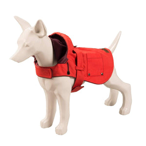Baker & Bray Dog Apparel Medium Baker & Bray | Hampstead Dog Hoodie | Raspberry/Burgundy BB-11-03-02-M PetsOwnUs - Pets Own Us