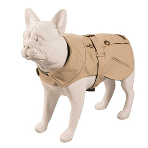 Baker & Bray Dog Apparel Large Baker & Bray | Kensington Dog Trench Coat | Stone/Forest BB-11-01-01-L PetsOwnUs - Pets Own Us