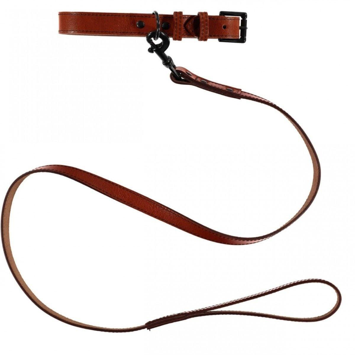 Baker & Bray Dog Apparel X-Small Camden Dog Collar and Lead Set by Baker & Bray - Tan BB-41-01-09-XS & BB-52-01-12 PetsOwnUs - Pets Own Us