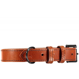 Baker & Bray Dog Apparel X-Small Camden Dog Collar by Baker & Bray - Tan BB-41-01-09-XS PetsOwnUs - Pets Own Us