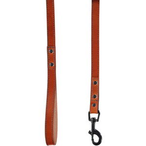 Baker & Bray Dog Apparel Default Title Camden Dog Lead by Baker & Bray - Tan BB-52-01-12 PetsOwnUs - Pets Own Us