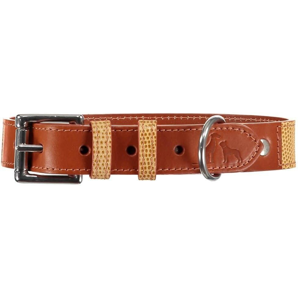 Baker & Bray Dog Apparel X-Small Chelsea Dog Collar by Baker & Bray - Caramel/Tan -XS PetsOwnUs - Pets Own Us