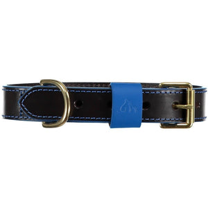 Baker & Bray Dog Apparel X-Small Pimlico Dog Collar by Baker & Bray - Black/Blue BB-41-01-10-XS PetsOwnUs - Pets Own Us