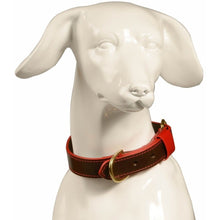 Baker & Bray Dog Apparel X-Small Pimlico Dog Collar by Baker & Bray - Chocolate/Red BB-41-01-12-XS PetsOwnUs - Pets Own Us
