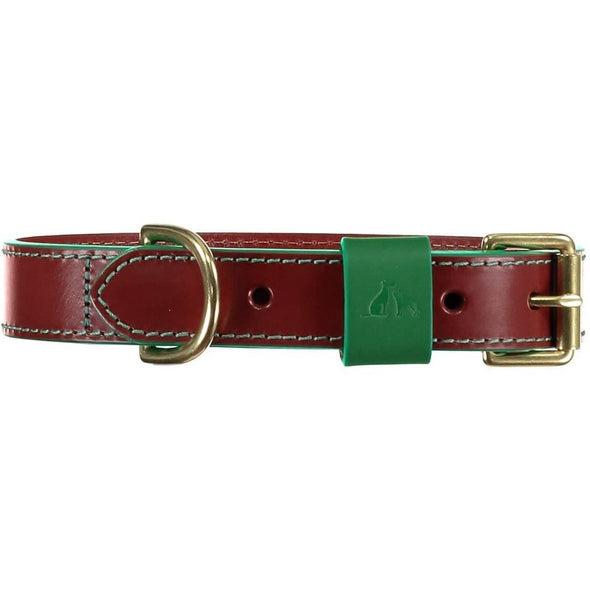 Baker & Bray Dog Apparel X-Small Pimlico Dog Collar by Baker & Bray - Tan/Green BB-41-01-11-XS PetsOwnUs - Pets Own Us