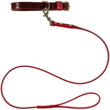 Baker & Bray Dog Apparel X-Small Pimlico Dog Collar & Lead Set by Baker & Bray - Chocolate/Red BB-41-01-12-XS & BB-52-01-09 PetsOwnUs - Pets Own Us