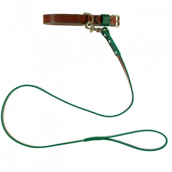 Baker & Bray Dog Apparel X-Small Pimlico Dog Collar & Lead Set by Baker & Bray -  Tan/Green BB-41-01-11-XS & BB-52-01-08 PetsOwnUs - Pets Own Us