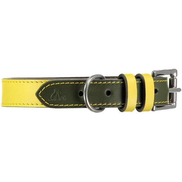 Baker & Bray Dog Apparel X-Small Richmond Dog Collar by Baker & Bray -  Canary/Birch BB-41-01-14-XS PetsOwnUs - Pets Own Us