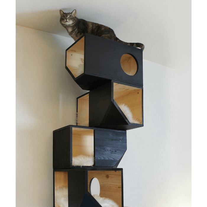 Catissa Climbing Cat Tower and Tree with Stairs - Black