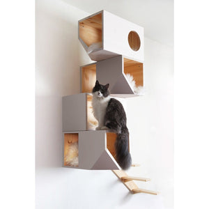 Catissa Cat Furniture Default Title Catissa Climbing Cat Tower and Tree with Stairs - White PetsOwnUs - Pets Own Us