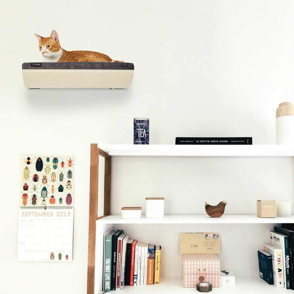 Cosy and Dozy Cat Shelf- Bed Soft Cappuccino CHILL Cat Shelf & Perch By Cosy and Dozy - Maple (Cushions available in Multiple Colours) PetsOwnUs - Pets Own Us