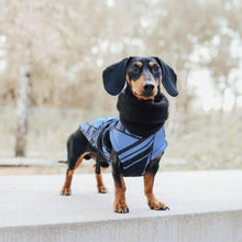 Hound Project Dog Apparel Designer Dachshund Winter Coat by The Hound Project PetsOwnUs - Pets Own Us