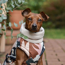 Hound Project Dog Apparel Designer Dog Waterproof Winter Coat by The Hound Project - XXS Breeds PetsOwnUs - Pets Own Us