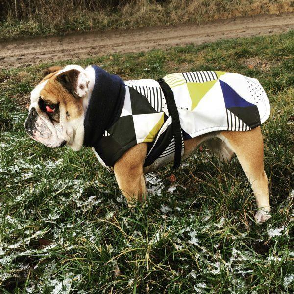 Hound Project Dog Apparel Aztec Designer English Bulldog Waterproof Coat by The Hound Project PetsOwnUs - Pets Own Us