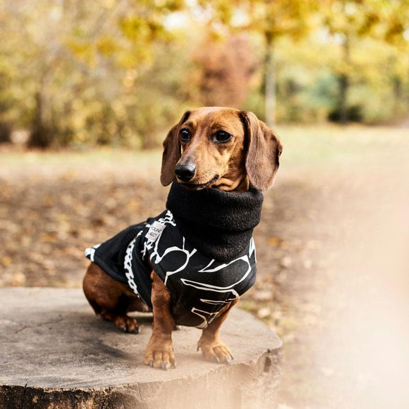 Hound Project Dog Apparel Aztec Designer Mini Dachshund Waterproof Coat by The Hound Project 1228 PetsOwnUs - Pets Own Us