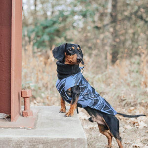 Hound Project Dog Apparel Aztec Designer Regular Dachshund Waterproof Coat by The Hound Project PetsOwnUs - Pets Own Us