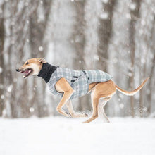 Hound Project Dog Apparel Aztec Designer Sighthound Waterproof Coat by The Hound Project 1264 PetsOwnUs - Pets Own Us