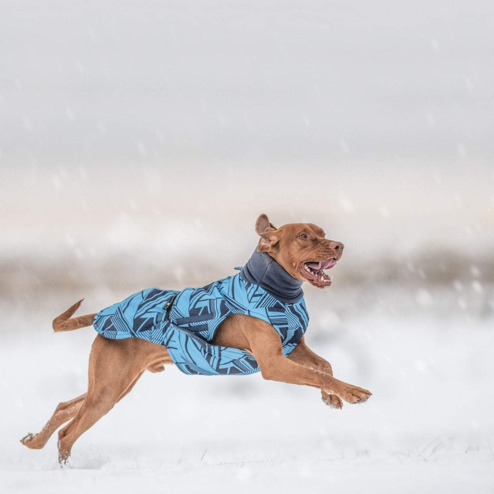 Hound Project Dog Apparel Aztec Designer Vizsla Waterproof Coat by The Hound Project 1214 PetsOwnUs - Pets Own Us