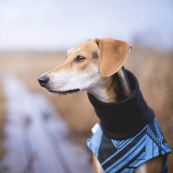 Hound Project Dog Apparel Designer Waterproof Dog Winter Coat by The Hound Project - Small Breeds PetsOwnUs - Pets Own Us