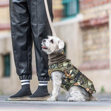 Hound Project Dog Apparel Designer Waterproof Dog Winter Coat by The Hound Project - XS Breeds PetsOwnUs - Pets Own Us