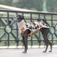 Hound Project Dog Apparel Designer Whippet Waterproof Winter Coat by The Hound Project PetsOwnUs - Pets Own Us