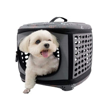 Ibiyaya Pet Carriers and Crates Collapsible Traveling Pet Hand Carrier by Ibiyaya - Grey FC1006-G PetsOwnUs - Pets Own Us