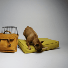 Labbvenn Luxury Dog Bed Small MØVIK Luxury Dog Bed by Labbvenn in Honey PetsOwnUs - Pets Own Us