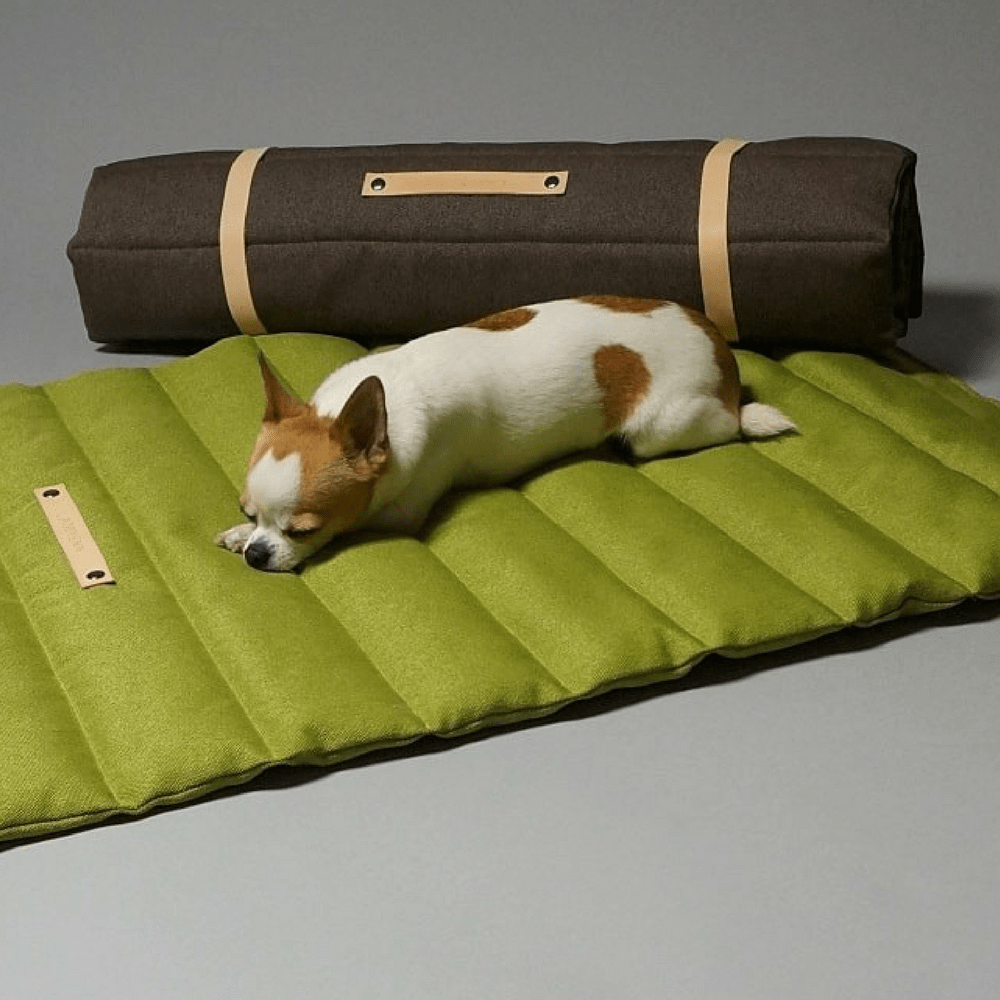 Travel Dog Bed >> The Fosser Dog Travel Bed By Labbvenn In Green