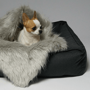 Labbvenn Luxury Dog Bed Small TÖVE Luxury High Side Dog Bed by Labbvenn in Anthracite PetsOwnUs - Pets Own Us