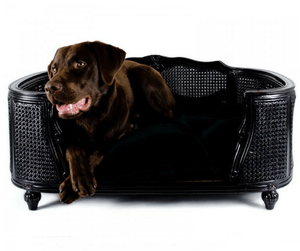 Lord Lou Dog Beds Large Arthur Luxury Webbing Dog Bed by Lord Lou - Black/Black Velvet PetsOwnUs - Pets Own Us