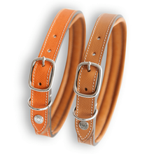 Lord Lou Dog Collar & Lead Small Buckle Ascot Hippique Luxury Dog Lead in Orange by Lord Lou PetsOwnUs - Pets Own Us