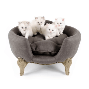 Lord Lou Cat Furniture Small Lord Lou Antoinette Designer Cat Lounger in Grey #064 PetsOwnUs - Pets Own Us