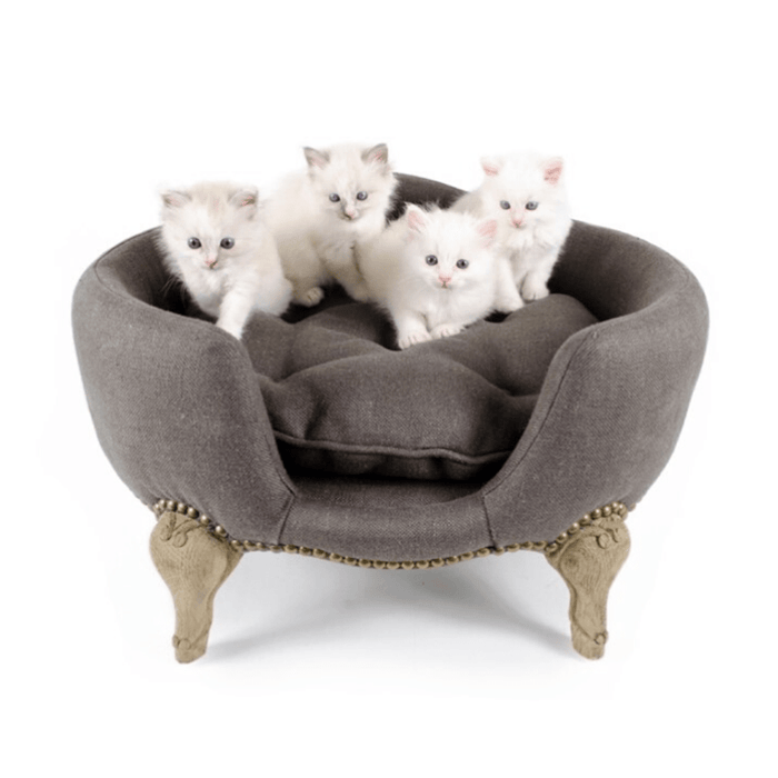 Lord Lou Antoinette Designer Cat Lounger in Grey