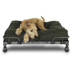 Lord Lou Dog Beds Large / Green Lord Lou Free-Wheeler Designer Dog Sofa (Set) 553-159 PetsOwnUs - Pets Own Us