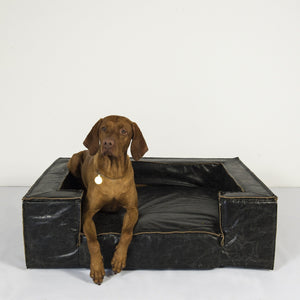 Lord Lou Dog Beds Large Lord Lou Luciano Designer Dog Sofa for Large Breeds 842 PetsOwnUs - Pets Own Us